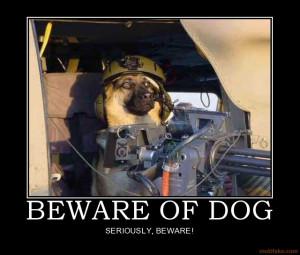 33 Dog Demotivational Posters