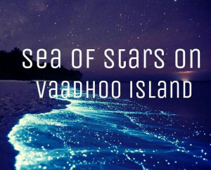 Sea of Stars, Vaadhoo Island, Maldives - Google Search