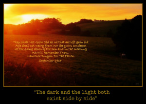 Dark And Light Quotes 184 darkness or light