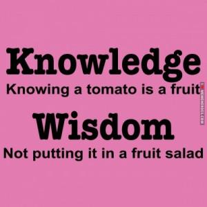 b403c-knowledge-vs-wisdom.jpg