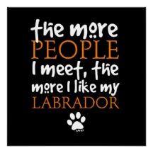 labrador quote that is so true more labrador quotes black labrador 134 ...