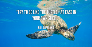 quote-Bill-Copeland-try-to-be-like-the-turtle--57612.png