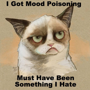 Grumpy cat quotes, funny grumpy cat quotes, grumpy kitty ...For more ...