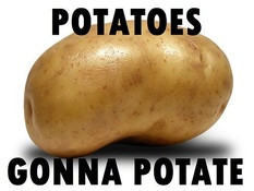 Potatoes gonna potate. - http://imgfave.com/view/682779