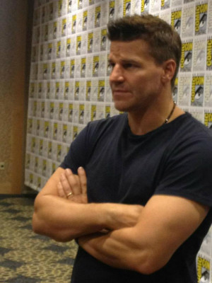 david boreanaz quotes emily deschanel Info