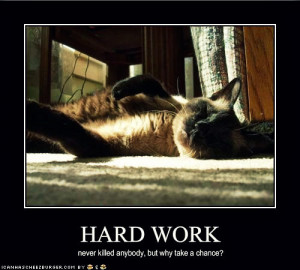 haRD WOrk - funny-pictures Fan Art