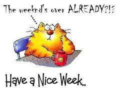 have a nice week more nicdfgf weeks nice weeks mornings sunshine ...