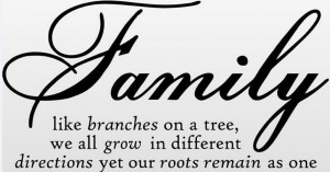 quote wall decal - removable wall sticker - Family like branches wall ...