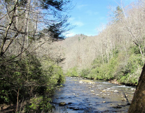 Great Smoky Mountains North Carolina