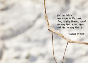 Little Snow, A Little Wallace Stevens