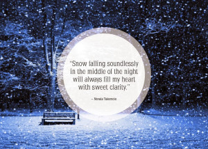 Top 10 Best Snowfall Quotes of 2015