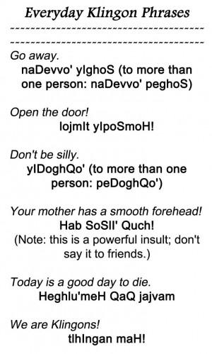 Everyday Klingon Phrases 3 from http://www.kli.org/tlh/phrases.html
