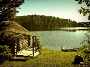 Goods Cabin The Lake Movie