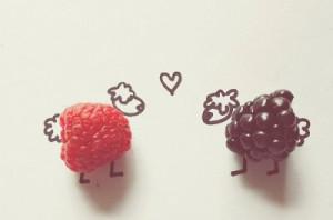 animals, berry, cute, love, sheep