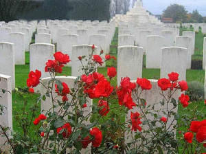 Happy Veterans day Poppy Photos, Images Quotes, Veterans Day 2014
