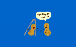 download now Its about Nuts Simple Funny Wallpapers Picture