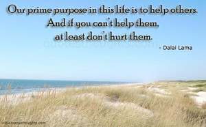 Our Prime Purpose In This Life Is To Help Others And If You Can't ...