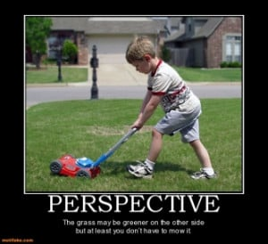 PERSPECTIVE - The grass may be greener on the other side but at least ...