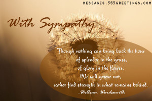 sympathy quotes with sympathy 50 amazing sympathy quotes for you ...