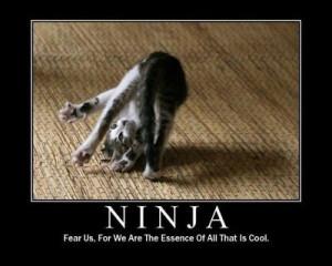 Cats-are-ninjas-cats-18104173-400-320.jpg#ninjas