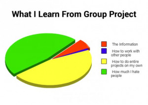 funny-pictures-what-i-learn-from-group-project
