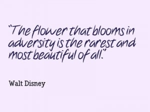 Walt-Disney-The-flower-that-blooms-in-adversity-is-the-rarest-and-most ...
