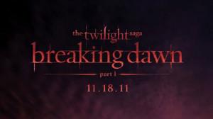 Comic-Con: Top 10 Quotes from 'The Twilight Saga: Breaking Dawn' Press ...