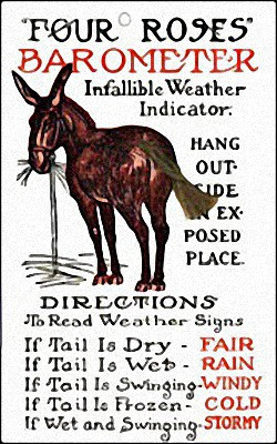 Old Time Weather Mule Forecaster