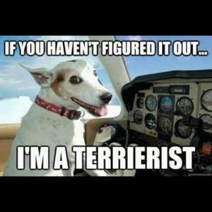 funny terrorist memes source http quoteimg com plane meme