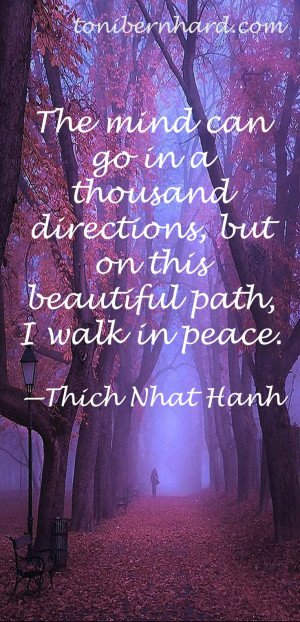 ... , but on this beautiful path, I walk in peace. --Thich Nhat Hanh