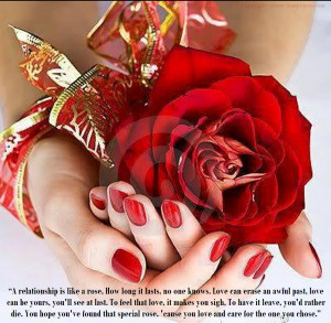 its a amazing red rose picture with romantic love quotes which is best ...