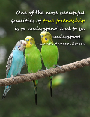 Bible Verses on Friendship