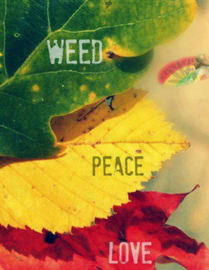 weed relationship quotes quotesgram