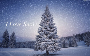 Love Snow Quotes Images, Pictures, Photos, HD Wallpapers