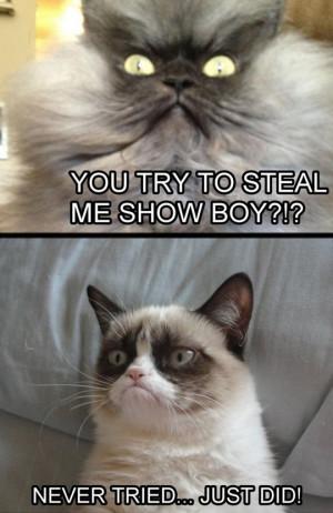 Grumpy Cat never tried