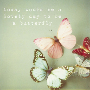 today would be a lovely day to be a butterfly (via SusannahT )