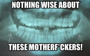 Related Pictures funny wisdom teeth
