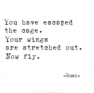 ... Quotes, Quotes. Rumi. Wings, Fly, Sufi Wisdom, Wings Quote, Being Free