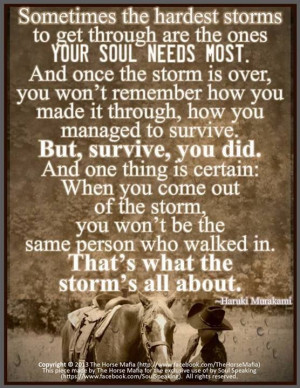 Surviving the storm.....Thoughts, Life, Inspiration, All In Quotes ...