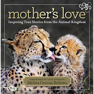 Mother's Love Review & Giveaway
