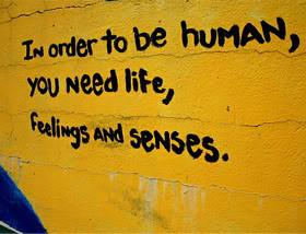 Quotes about Senses