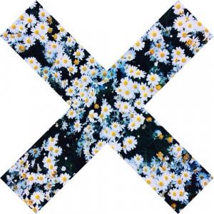 lavender-daisies