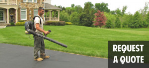 Green Leaf offers competitive Landscaping quotes