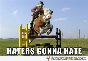Cow Riding Bike Motorcycle Funny Animals Pictures Stunts Pics
