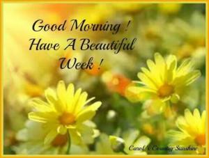 Good morning. Have a beautiful week!