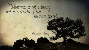 ... Proposed Wilderness Area, quote by Edward Abbey #conservation #BCAWY