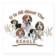 All About The Beagle Sticker for