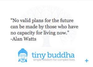 Introducing: The Tiny Buddha Quote Widget