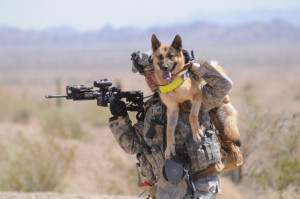 Soldier & German Shepherd (800×531)
