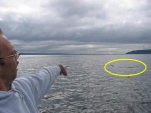 Point No Point Sea Serpent